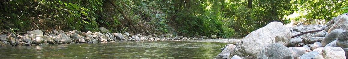 Река Бистрица (Благоевград)